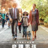 Movie, Wonder(美國) / 奇蹟男孩(台.港) / 奇迹男孩(中), 電影海報, 台灣