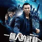 Movie, 一個人的武林(港) & 一个人的武林(中) / 一個人的武林(台) / Kung Fu Jungle(英文), 電影海報