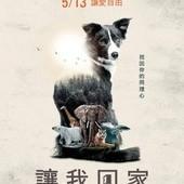 Movie, Give Me Shelter / 讓我回家(台), 電影海報, 台灣