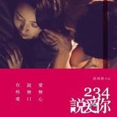 Movie, 234說愛你 / Another Woman, 電影海報