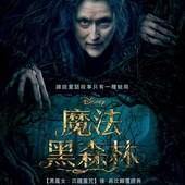 Movie, Into the Woods / 魔法黑森林, 電影海報