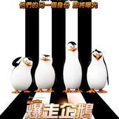 Movie, 馬達加斯加爆走企鵝 / The Penguins of Madagascar / 马达加斯加的企鹅 / 荒失失企鵝, 電影海報