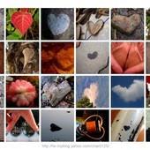 自製明信片《第一彈》大自然愛心