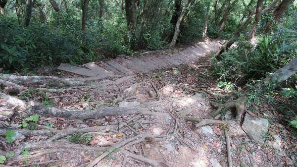 南澳之旅, 朝陽國家步道