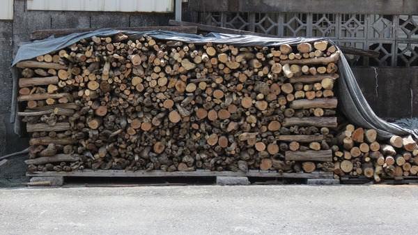 南澳之旅, 木材
