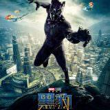 Movie, Black Panther(美國) / 黑豹(台.中.港), 電影海報, 中國