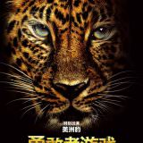 Movie, Jumanji: Welcome to the Jungle(美國, 2017) / 野蠻遊戲:瘋狂叢林(台灣) / 勇敢者游戏:决战丛林(中國) / 逃出魔幻紀:叢林挑機(香港), 電影海報, 中國, 角色