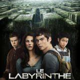 Movie, The Maze Runner(美國, 2014) / 移動迷宮(台灣.香港) / 移动迷宫(中國), 電影海報, 法國