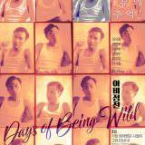 Movie, 阿飛正傳(香港, 1990) / 阿飛正傳(台灣) / 阿飞正传(中國) / Days of Being Wild(英文), 電影海報, 韓國, 數位修復版