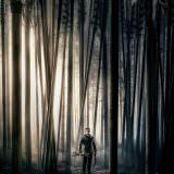 Movie, Robin Hood(美國, 2018年) / 羅賓漢崛起(台灣) / 箭神‧第一戰(香港) / 罗宾汉(網路), 電影海報, 美國