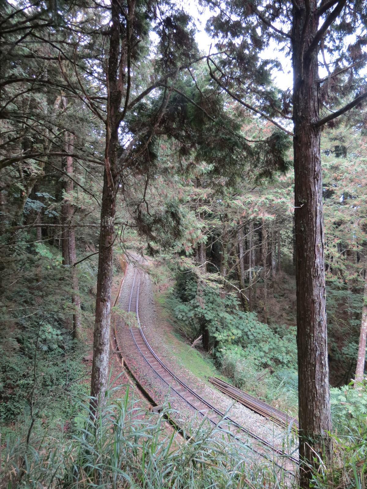 阿里山林業鐵路(森林小火車), 祝山