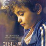 Movie, كفرناحوم(黎巴嫩, 2018年) / 我想有個家(台灣) / Capharnaum(英文) / 迦百农(網路), 電影海報, 韓國