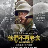 Movie, 他們不再老去 / They Shall Not Grow Old(英國, 2018年) / 不老的戰跡(香港) / 他们已不再变老(網路), 電影海報, 台灣